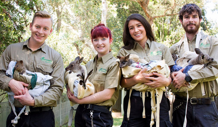 736x430Featherdale Wildlife Park Blacktown